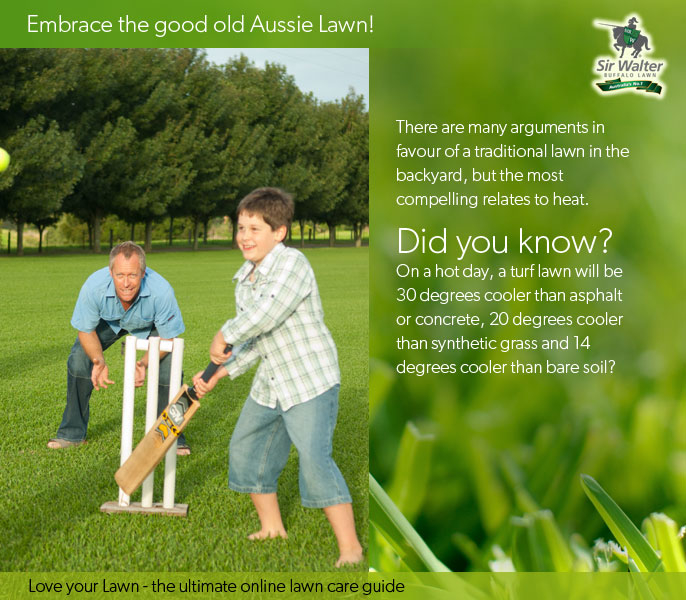 Embrace the humble Aussie Lawn