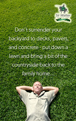 Don't surrender your   backyard to decks, pavers, and concrete - put down a lawn and bring a bit of the countryside back to the family home...
