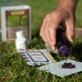 Lawn maintenance checking the pH of your lawn