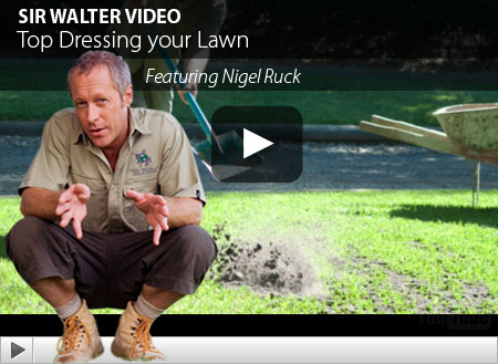 Lawn Care Guides Articles And Videos Tagged With Top
